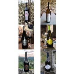 6 botellas variadas